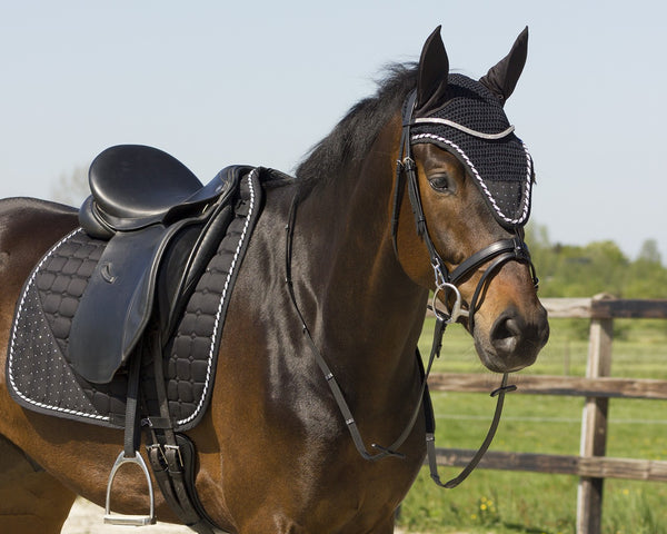Buy Online Pony Dressage Accessories from Our Wide Collections ...
