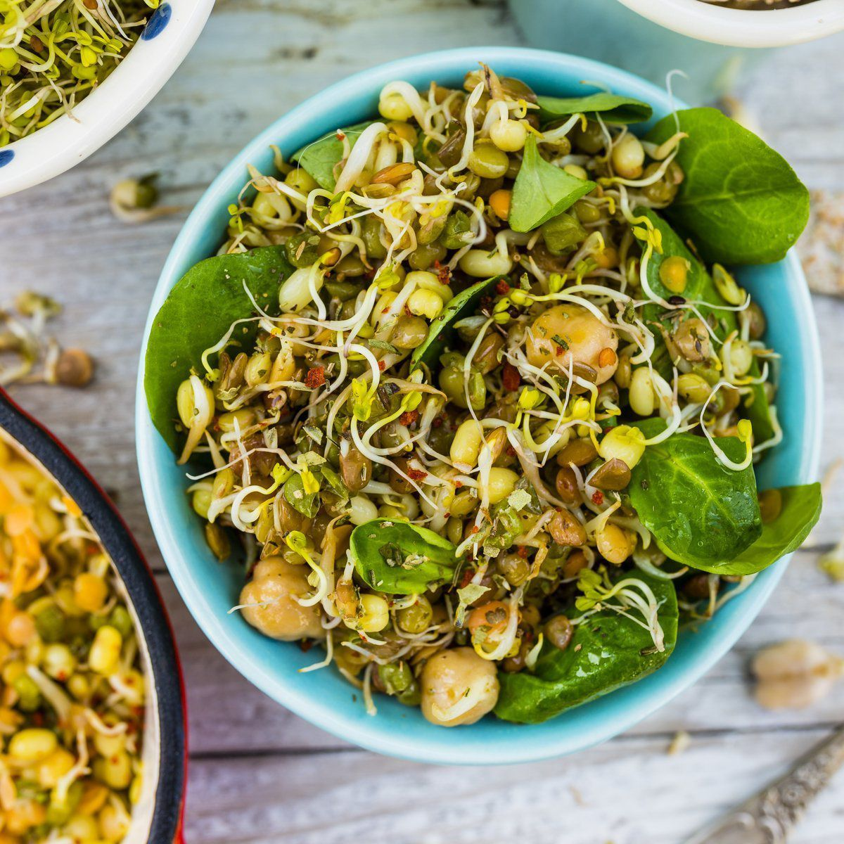 Bowl of sprouts and salad in blue bowl, white wood background