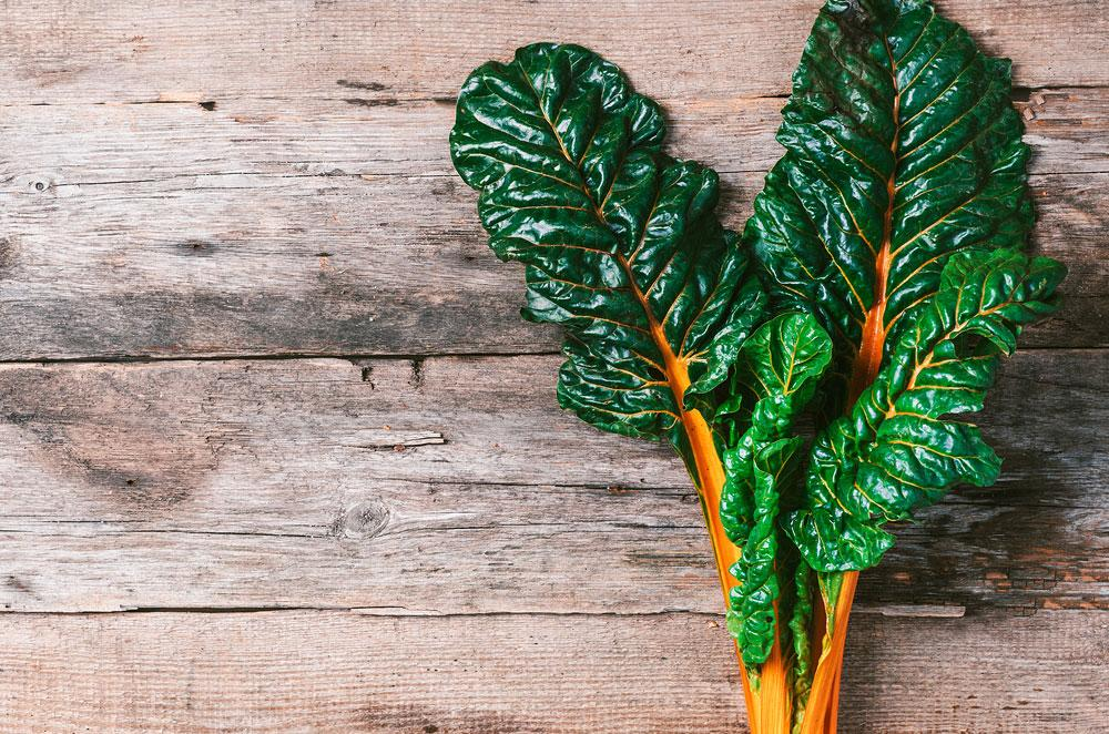 Swiss Chard Orange