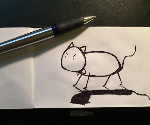 PonCat Cat Drawing