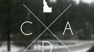 All Things CDA in February