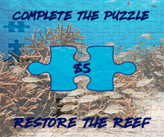 Complete the puzzle restore the reef