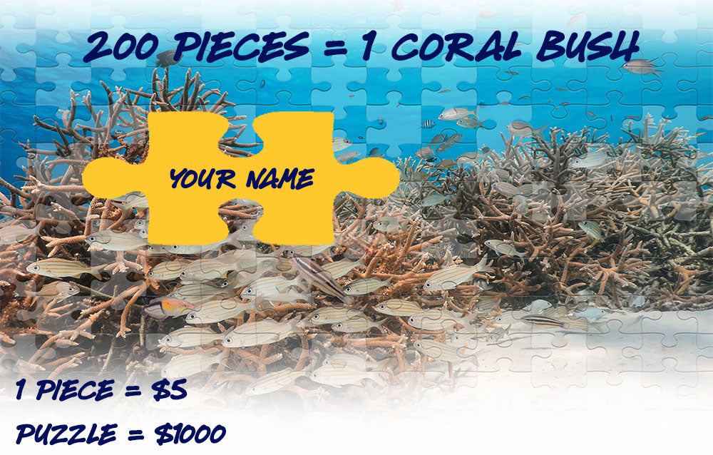 Restore the Reef - Get a piece of the coral puzzle