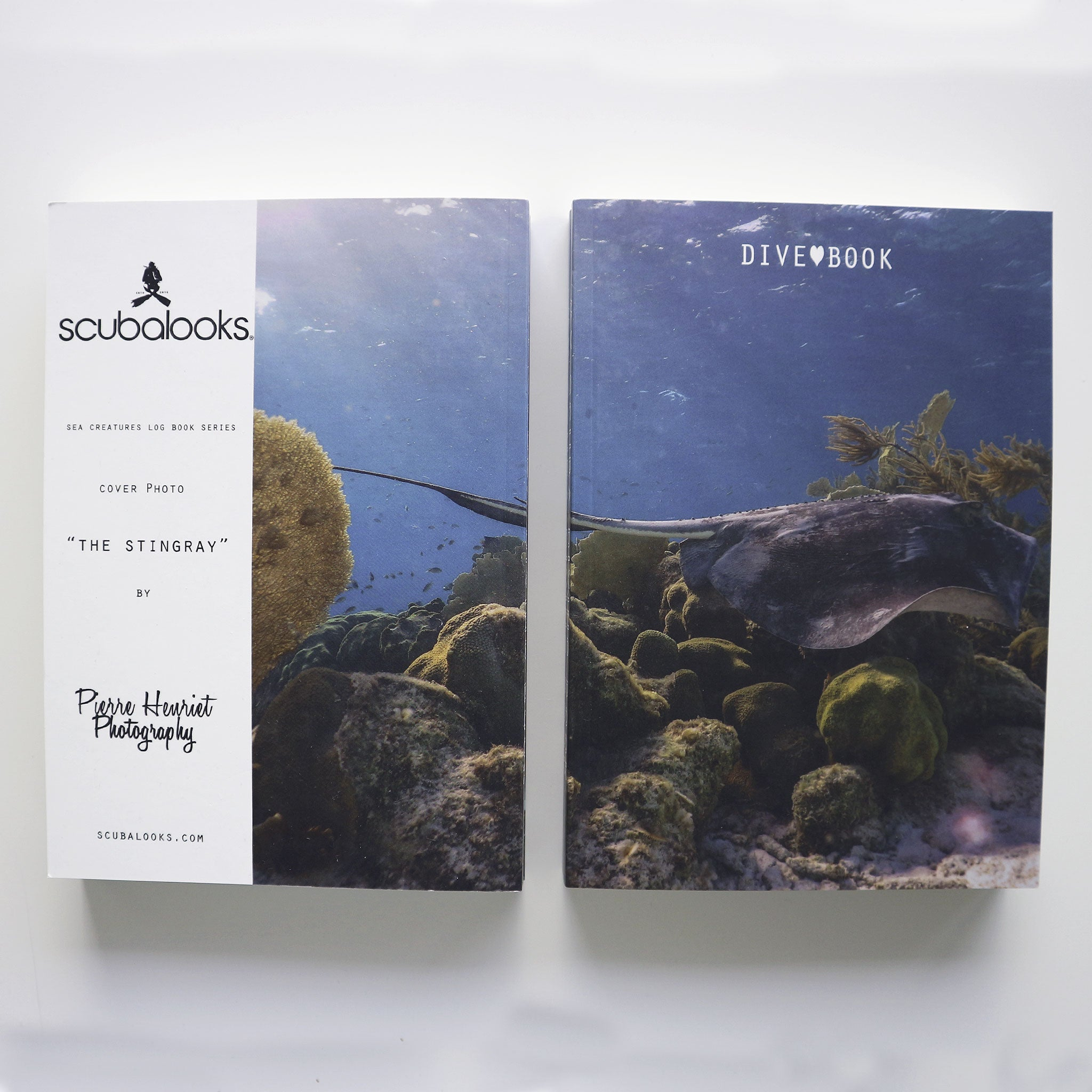 Logbook Stingray Scuba Dive Log