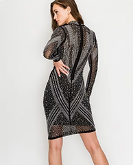Sparkle Long Sleeve dress