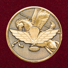 The Paratrooper's Coin