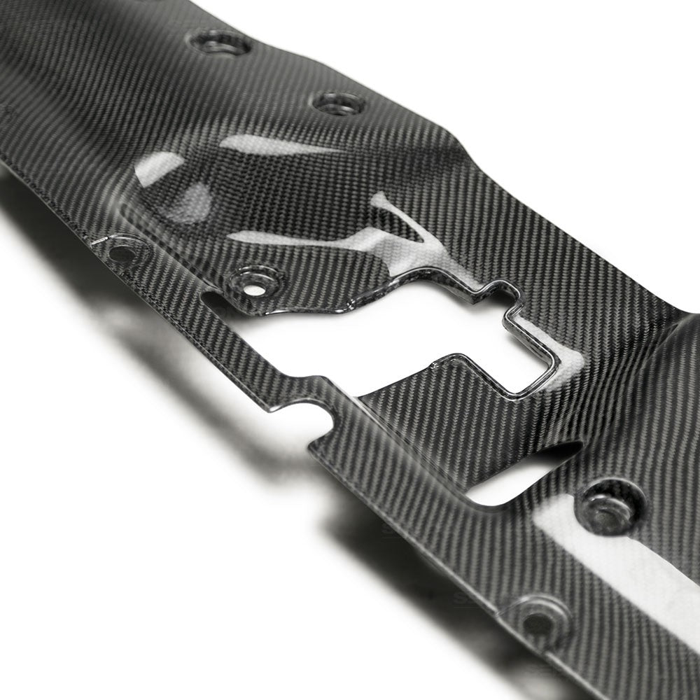 Seibon Carbon Fiber Radiator Cooling Plate 2017-up Honda Civic Type R FK8 (center)