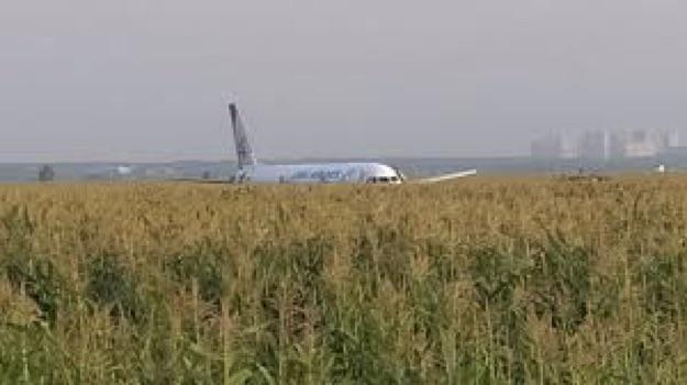 Plane Carrying 226 Passengers and 7 Crew Makes Emergency Landing in Field, No Injuries