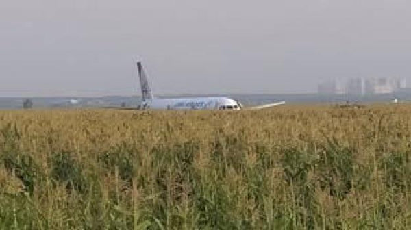 Plane Carrying 226 Passengers and 7 Crew Makes Emergency Landing in Field, No Injuries | Rickshaw Journey
