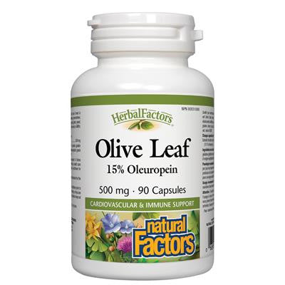Natural Factors HerbalFactors® Olive Leaf 500 mg 90 Capsules