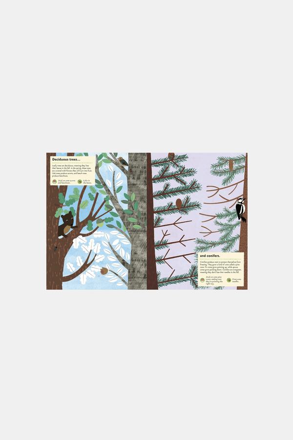 Various Publishers Books In The Forest My Nature Sticker Activity Book
