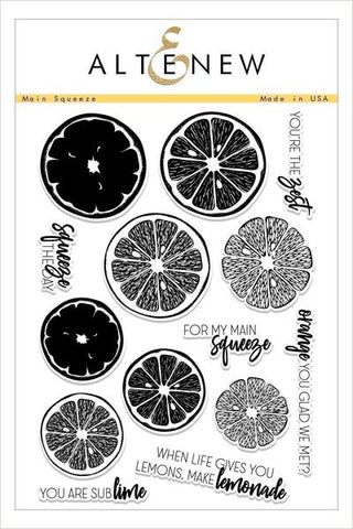 Main Squeeze Stamp Set