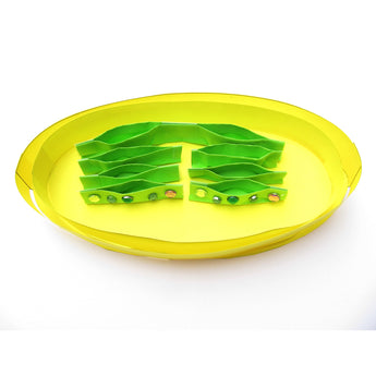 Cool Chloroplasts now easier and quicker to make!