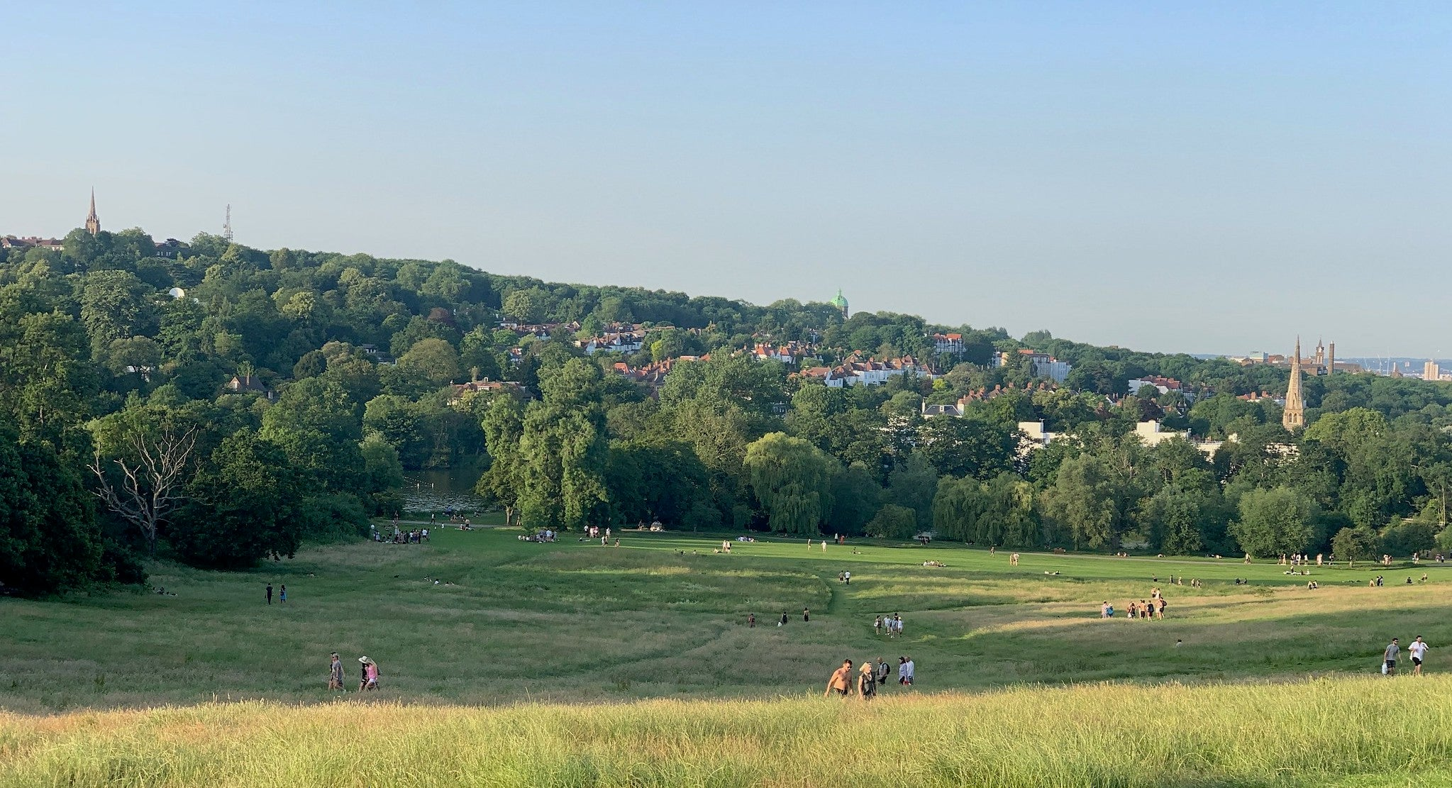 Scenic view of hampstead heath