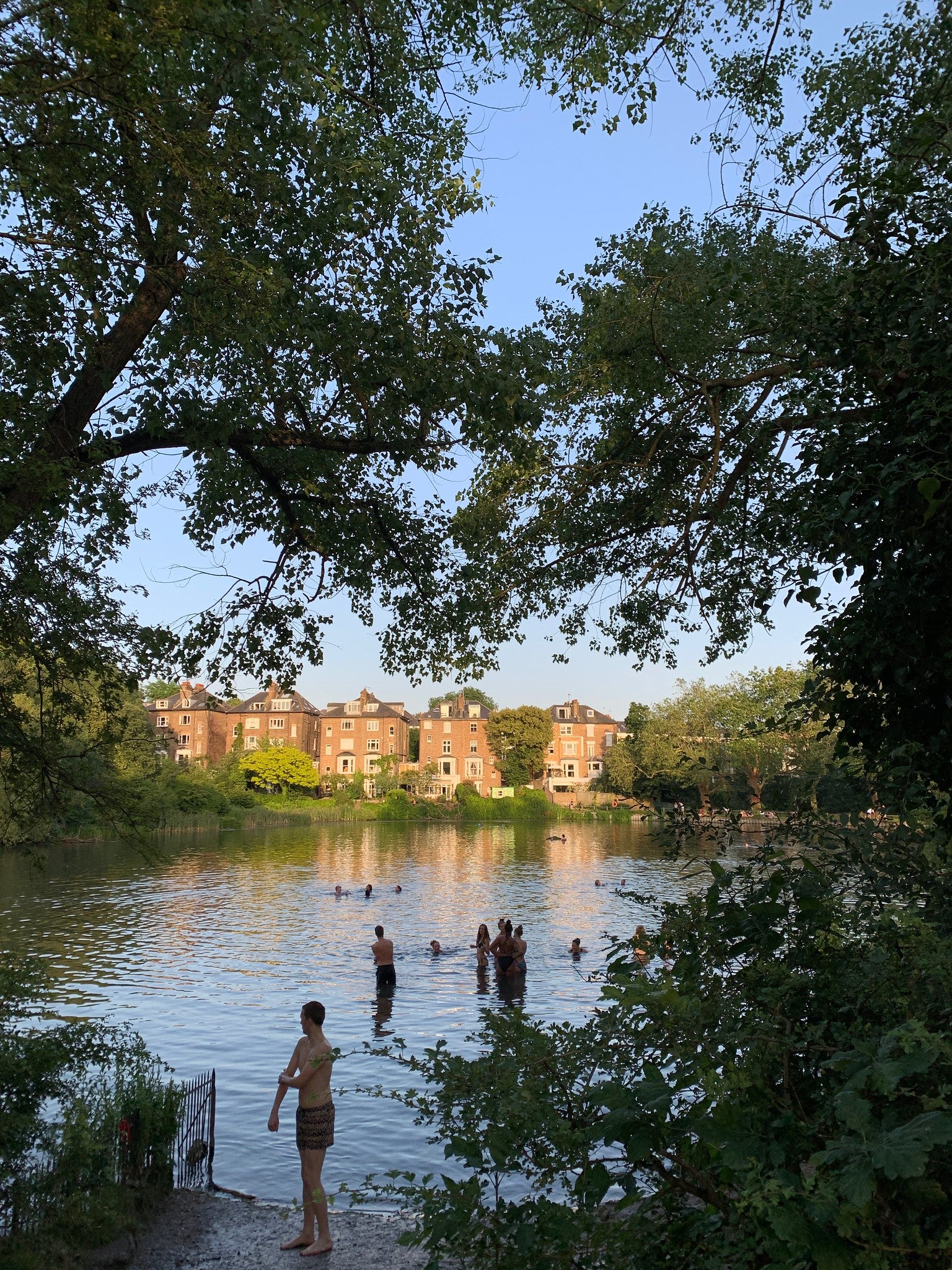 Hampstead's ponds
