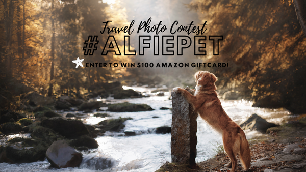 #alfiepet Travel Photo Contest 2019!