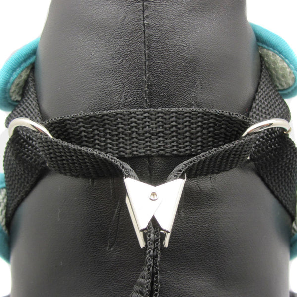Alixis Step-in Harness and Leash Set