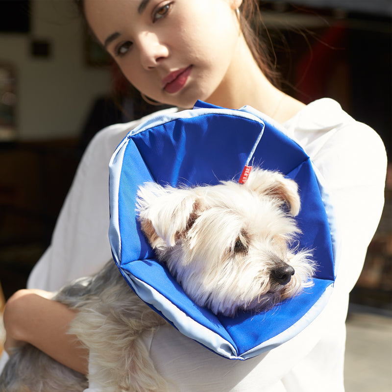 Keeva Recovery Collar - Blue