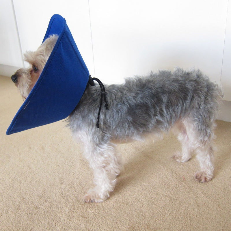 Soft Recovery Collar