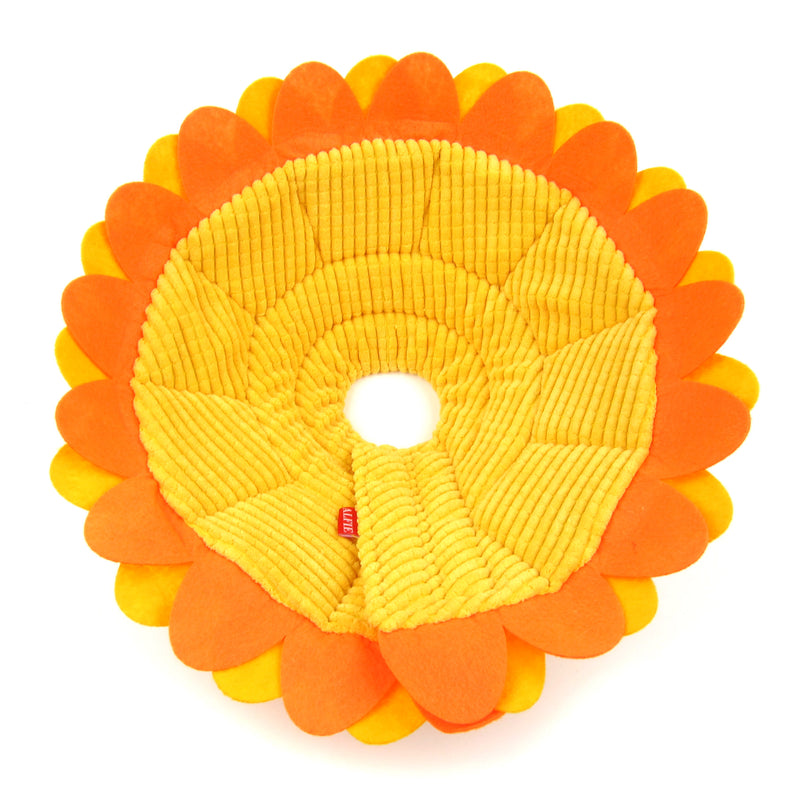 Noah Sunflower Recovery Collar