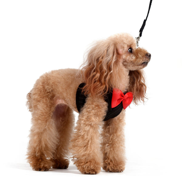 Oliver Step-in Harness and Leash Set