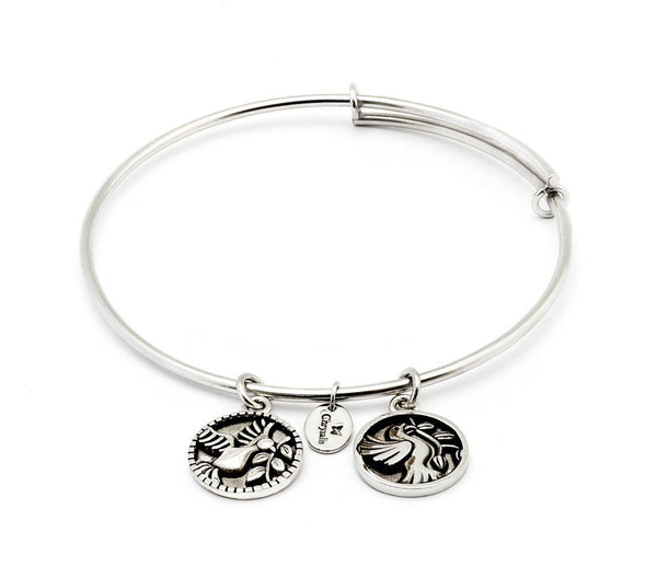 Serenity Truth Rhodium Plated Expandable Bangle
