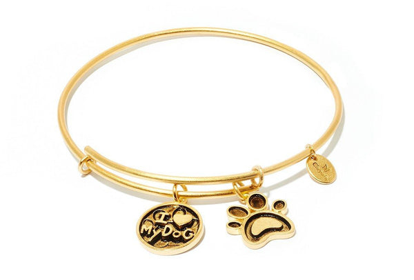 Friends and Family I Love My Dog Gold Plated Expandable Bangle