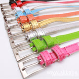 Beautiful Multi-Color Thin Belt - J20Style - 2
