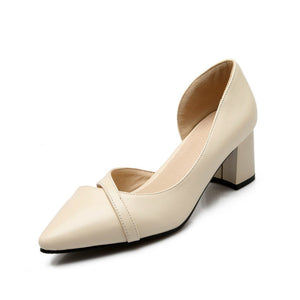 Casual Pointed Toe Thick Heel Shoes