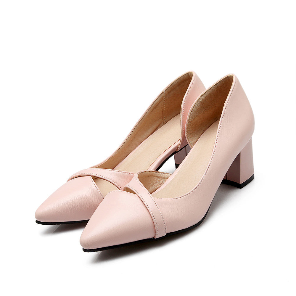 Casual Pointed Toe Thick Heel Shoes – J20Style
