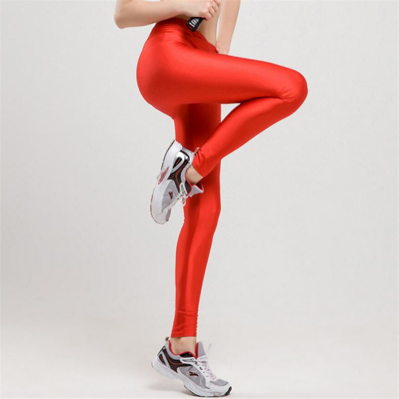 Women Solid Candy Leggings High Stretched Legging Knitted Spandex Pants Sale