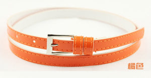 Beautiful Multi-Color Thin Belt - J20Style - 20