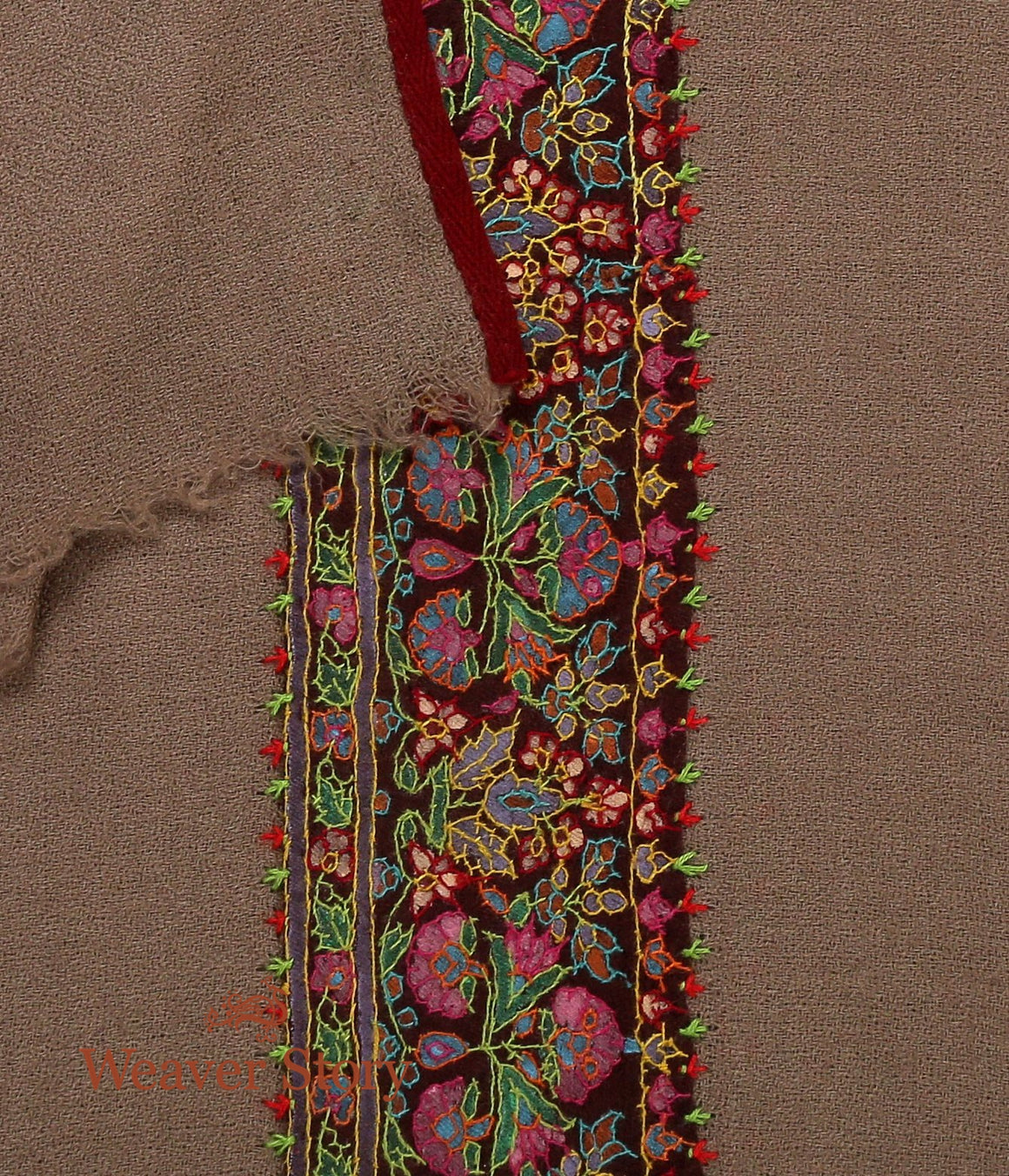 Toosh Color Pashmina Muffler with Sozni Border