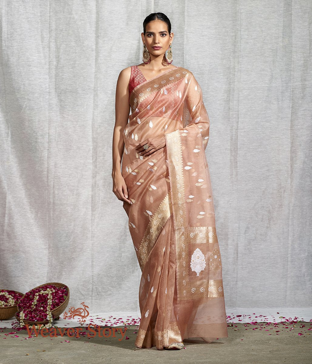 Handwoven Soft Brown Sona Rupa Booti Saree With Floral Border