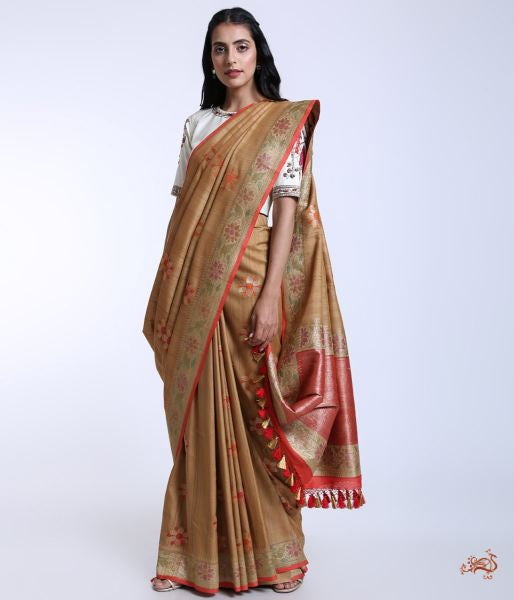 Handwoven Tusser Georgette Banarasi Saree With Rangkaat Dye Saree