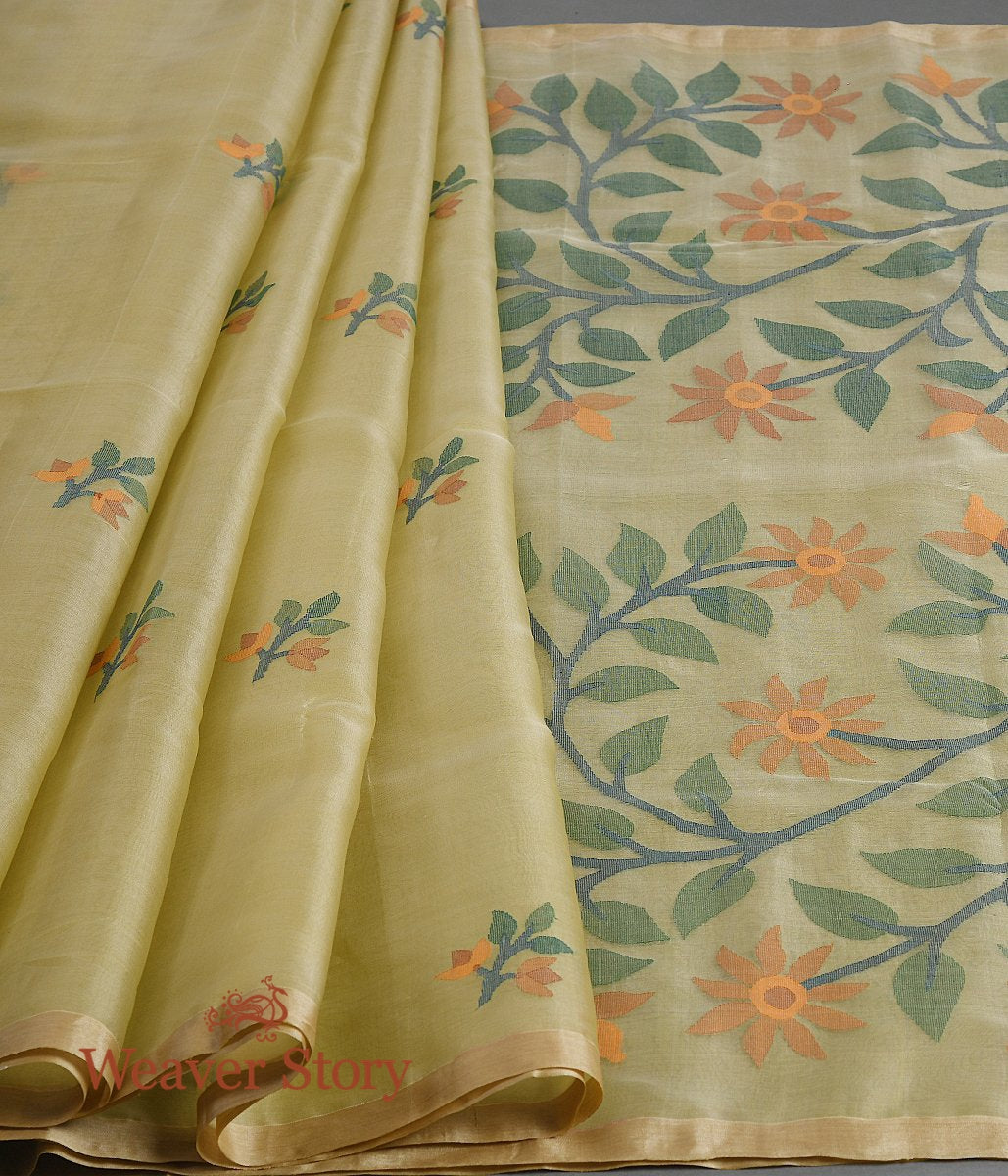 Handwoven Light Green Muslin Jamdani Saree with Multicolor Pallu and Booti
