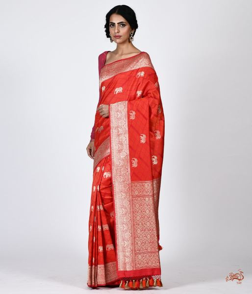 Handwoven Tanchoi Saree With Shikargah Border