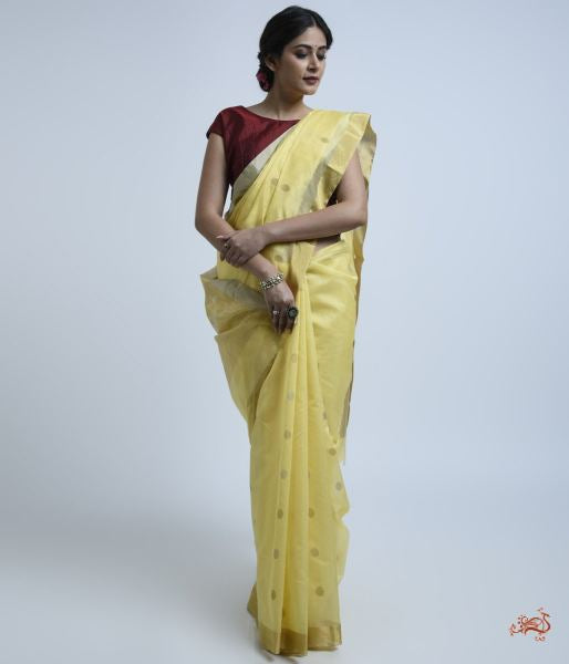 Yellow Handwoven Chanderi Saree With A Gold Tissue Pallu Saree