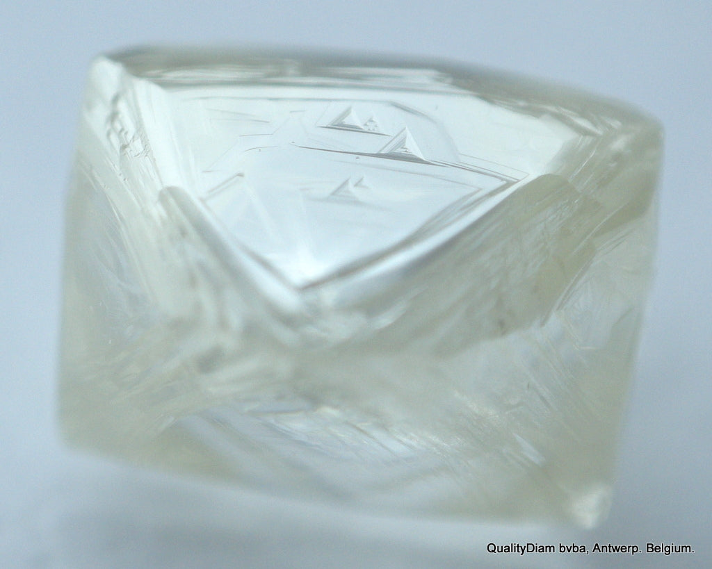 J Flawless 0.74 Carat Genuine Diamond Out From A Diamond Mine Natural Diamond