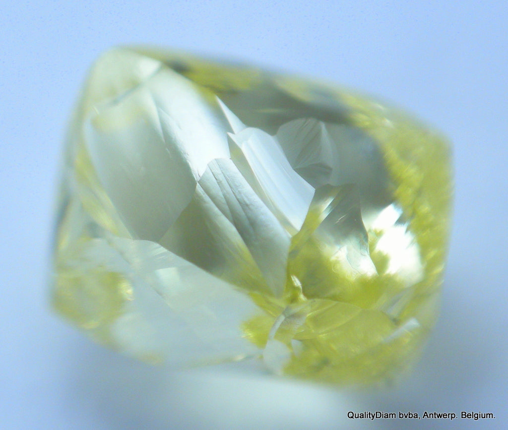 GENUINE DIAMONDS ARE FOREVER For Rough Diamonds Jewelry: Intense Fancy Natural Yellow Diamond