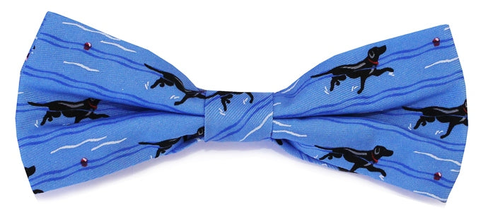 Doggy Paddle: Boys Bow Tie - Blue