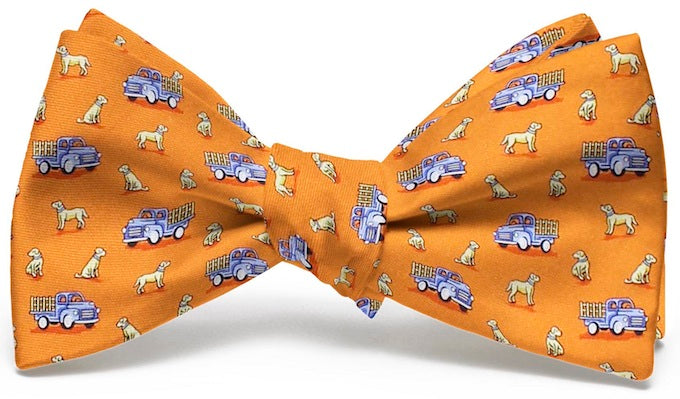 Dogs Love Trucks: Boys Bow Tie - Orange