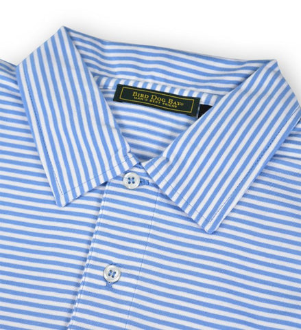 Haddon: Polo Shirt - Blue/White