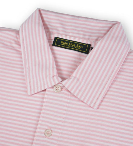 Haddon: Polo Shirt - Pink/White