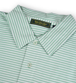 Haddon: Polo Shirt - Green/White