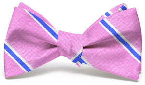 James: Bow Tie - Pink/Blue