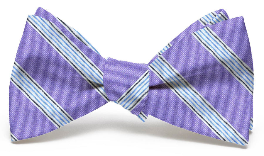Catalina: Bow Tie - Violet/Blue