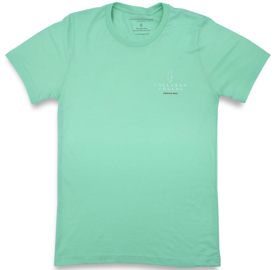 In A Pinch: Short Sleeve T-Shirt – Mint (Small)