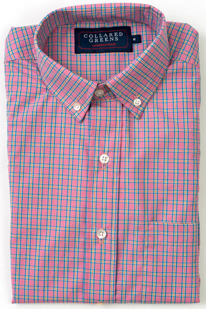 Cary: Brookline Button Down - Pink/Blue