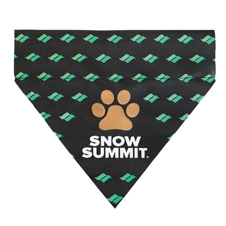 Snow Summit Pet Bandana